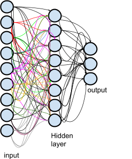 Neural Networks: Input, Hidden Layer, Output